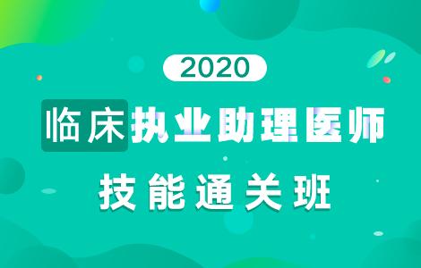 2020临床执业助理医师技能通关班