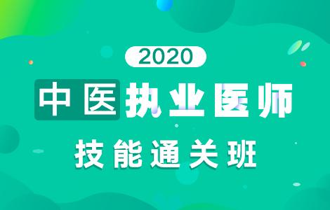 2020中医执业医师技能通关班