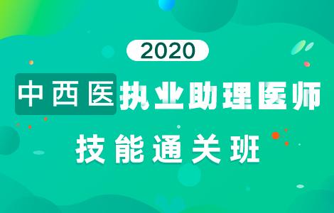 2020中西医执业助理医师技能通关班