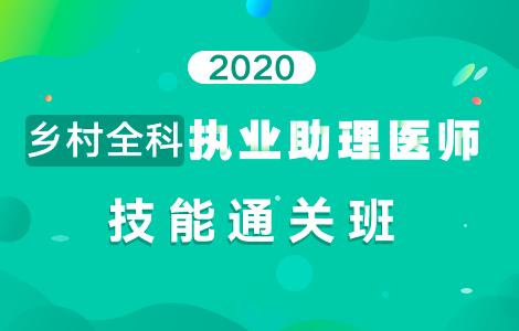 2020乡村全科执业助理医师技能通关班